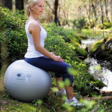 SISSEL® SECUREMAX EXERCISE BALL 75cm Silver
